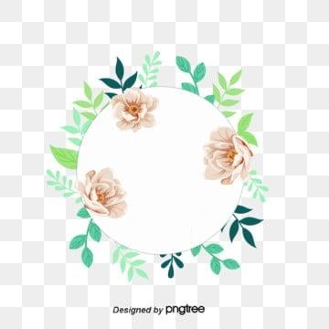 วงกลม ดอกไม้ สีครีม สามดอก ลอมด้วยใบ วงกลม สีเขียวอ่อนวงกลม  ดอกไม้  สีครีม รูปภาพ PNG และเวกเตอร์