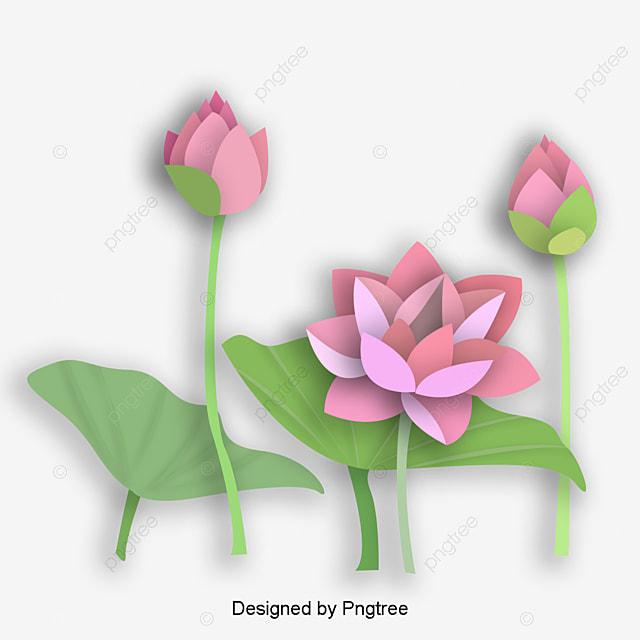Origami Flower (Easy Lotus Model) - YouTube | 640x640
