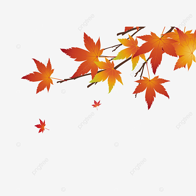 Autumn Leaves Autumn Png Fall Png Transparent Clipart Image And Psd File For Free Download