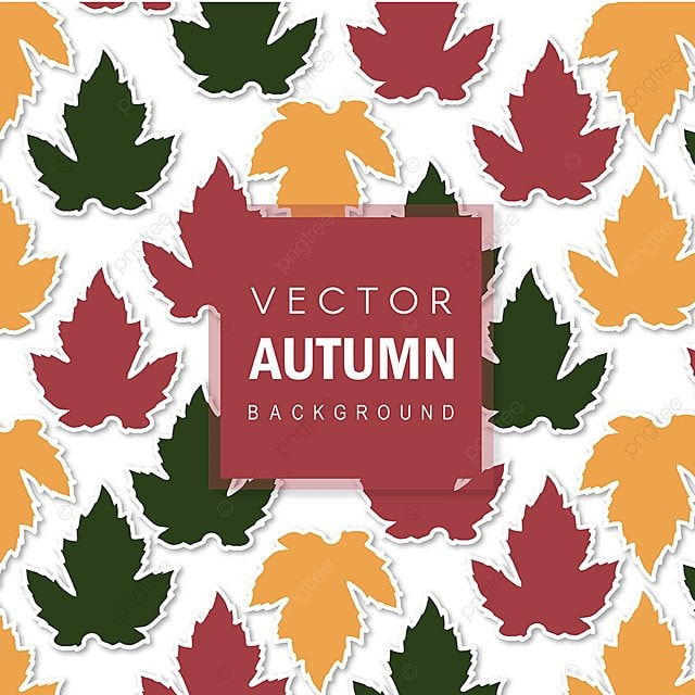 Beautiful Autumn Colorful Leaves Background Backdrop Wallpaper PNG And Vector