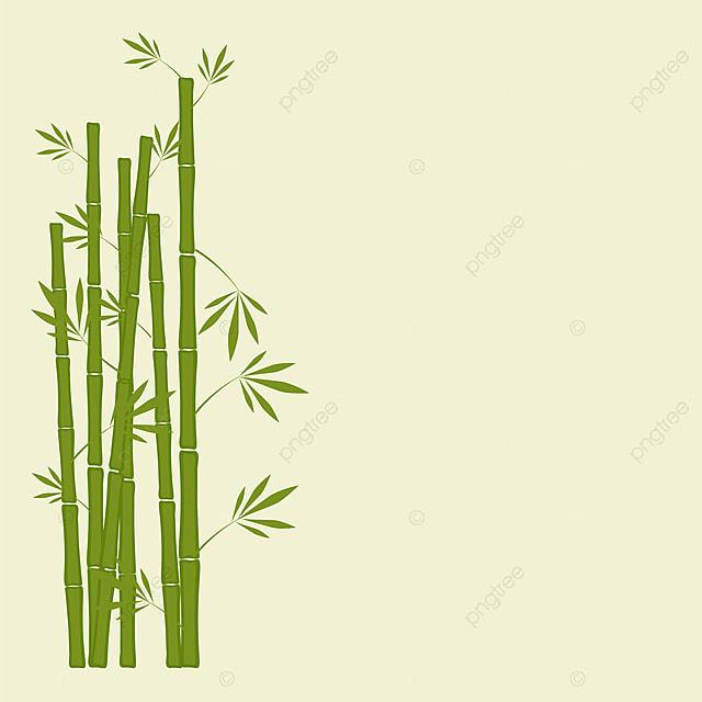 origine verte green le bambou frais png et vecteur pour t u00e9l u00e9chargement gratuit
