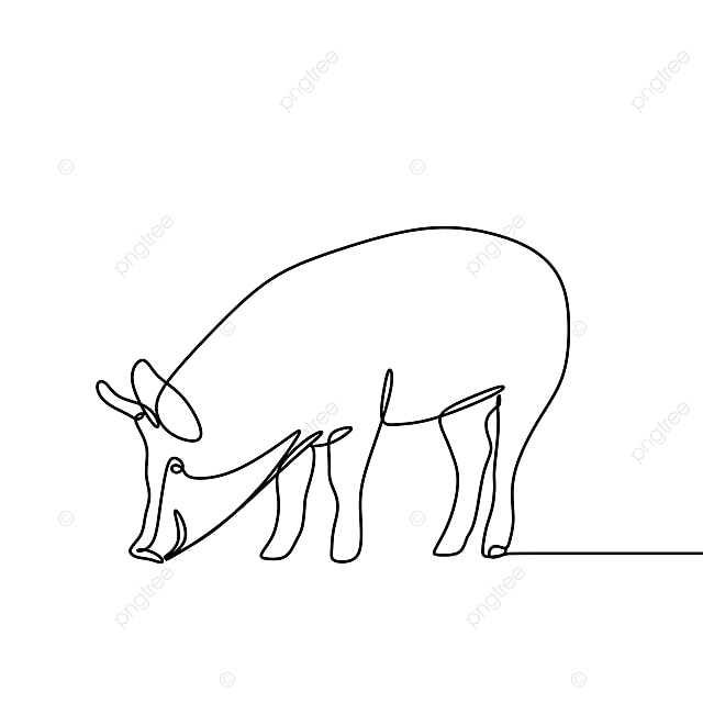 Un Dibujo De Linea De Cerdo Vector Minimal Lineart Black Graphic