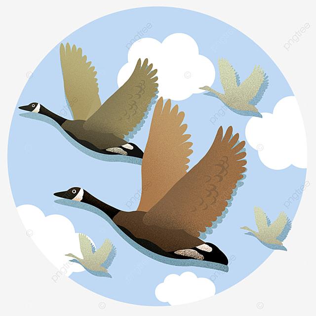 Надписью, рамки для текста картинки улетающих птиц осенью