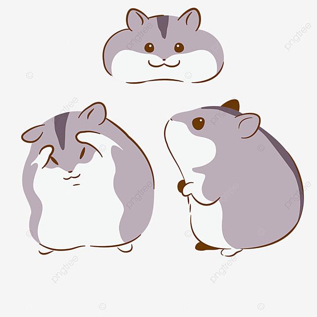 Les Hamsters Gris Sont Mignons Clipart Hamster Souriant Et Timide Dessin Anime Png Et Vecteur Pour Telechargement Gratuit