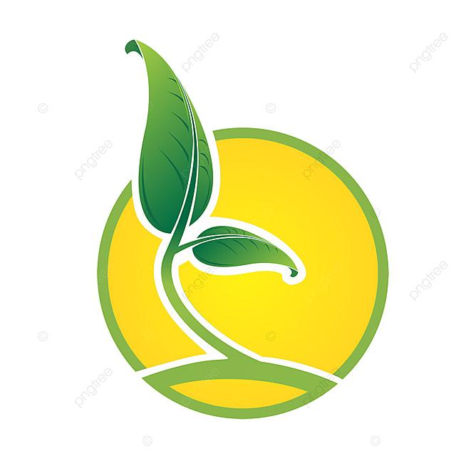 logo l agriculture logo p u00e9pini u00e8re logo de la feuille image