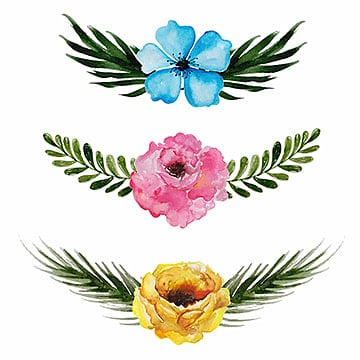 watercolor floral collection, Floral, Ornamnets, Decoration PNG and Vector