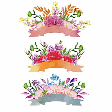 Watercolor Floral & Ribbon Design, Ribbon, Aquarela, Arte PNG e Vector