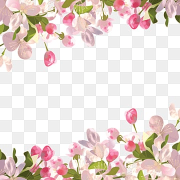 Flower Background Png Vector Psd And Clipart With