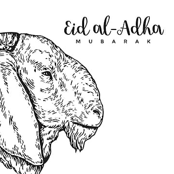 vintage hand drawing eid al adha greeting card sketch card illustration eid al adha, Islamic, Eid Al-adha, Hajj PNG and Vector