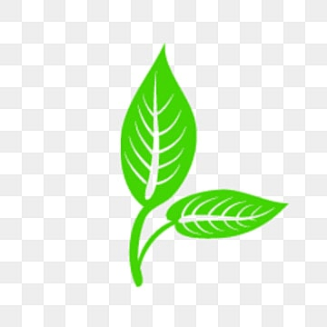 fall leaf vector png vectors psd and clipart for free download rh pngtree com maple leaf vector artwork pot leaf vector art
