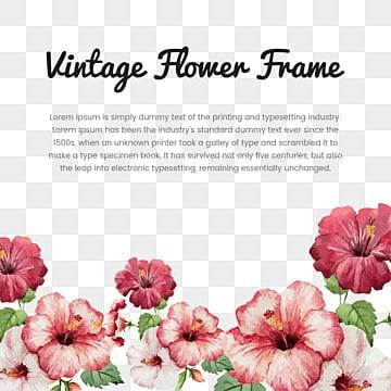 Blume Vektor PNG Bilder | Vektoren und PSD Dateien | Kostenloser ...