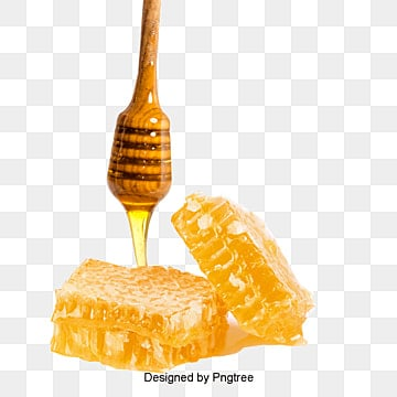 honey png  vectors  psd  and clipart for free download honey bee clip art images free honey bee clip art images free