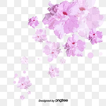 Cherry blossoms, Cherry Blossoms, Watercolor, Pink PNG and Vector