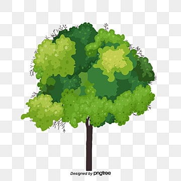Un arbre, De L'arbre, Bois, Les FeuillesImage PNG