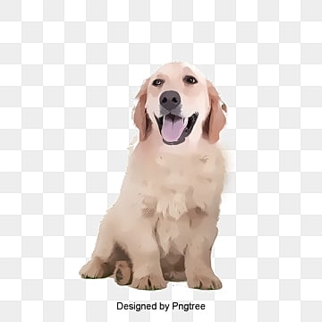 dog png  vectors  psd  and clipart for free download pngtree creation clip art christian creation clip art images
