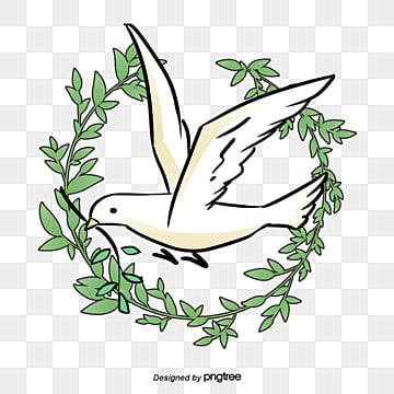Peace Dove PNG Images