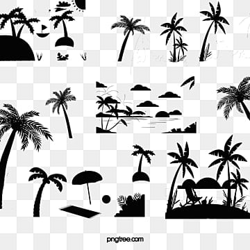 coconut tree, Coconut Tree, Coconut, Sandy Beach PNG and PSD