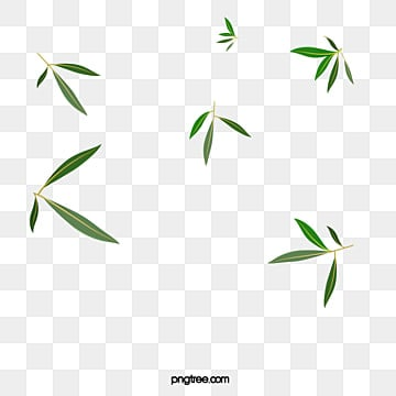 bamboo png vector psd and clipart with transparent background for free download pngtree bamboo png vector psd and clipart