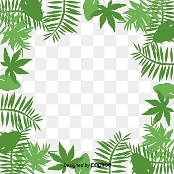 Palm leaf border, Cartoon, Hand Painted, Vector PNG and Vector