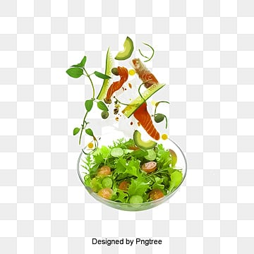 fruit salad illustration image