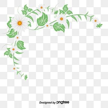 Des Plantes Grimpantes Png Images Vecteurs Et Fichiers Psd