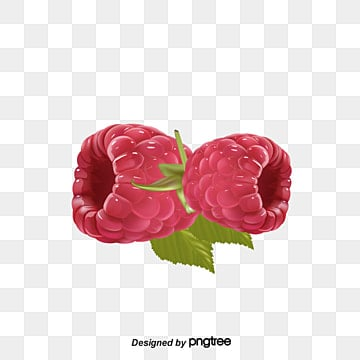 raspberry png vectors psd and clipart for free download