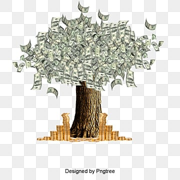 money, Money Tree, Money, Coin PNG and PSD