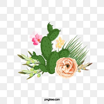 Cactus flower png vectors psd and clipart for free download pngtree fleshy cactus flowers fleshy cactus flowers green cactus bloom pink flowers png image mightylinksfo