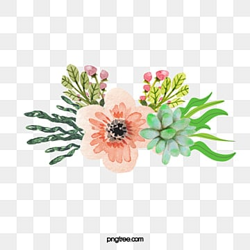 Watercolor flowers vector. Png psd and clipart