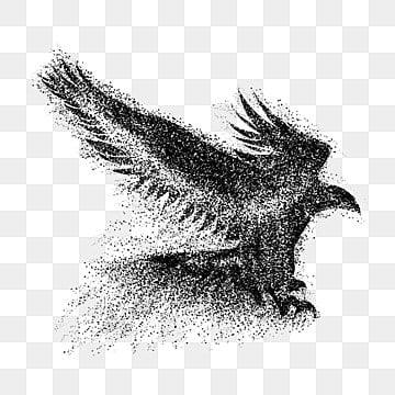 Eagle, Creative, Esparcir, Granule PNG y Vector