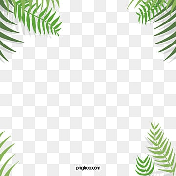 tropical plants png vectors psd and clipart for free