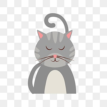 Cat Png Images Download 16 158 Png Resources With