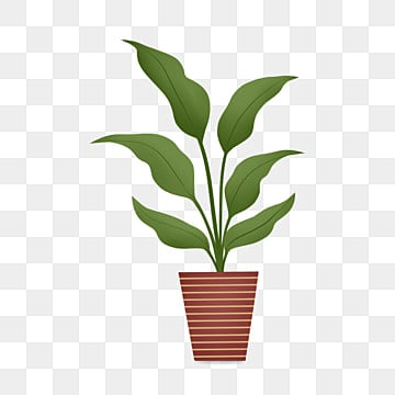 Flower Pot Png Vectors Psd And Clipart For Free