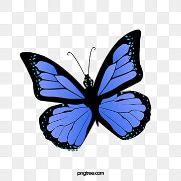 Blue Butterfly Png Images Vectors And Psd Files Free Download On