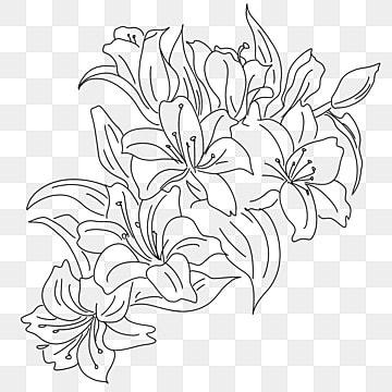 As Flores Em Preto E Branco Png Images Vetores E Arquivos