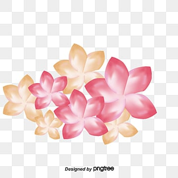 Plumeria, Flowers, Pattern, Plumeria PNG and Vector