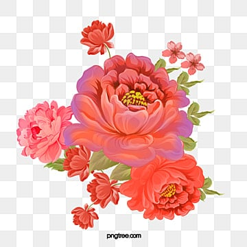 Peony Clipart Png Images Vector And Psd Files Free Download On Pngtree