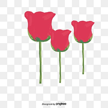 Poppy flower png vectors psd and clipart for free download pngtree poppy beautiful poppy flowers poppy vector png and vector mightylinksfo