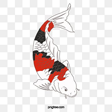 fish hair style koi carp fish png image and clipart for free 3461