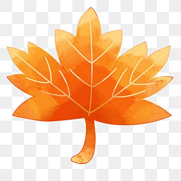 Maple Leaf, Orange, Maple Leaf, Fall PNG and Vector