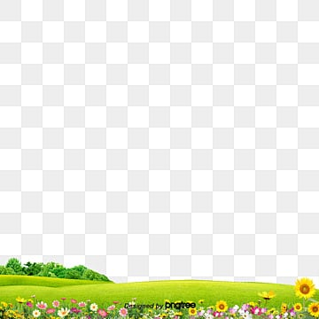 Garden lawn, Grass, Meadow, Flower PNG and PSD