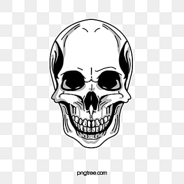 Skull Png Images Vector And Psd Files Free Download On Pngtree