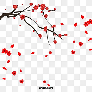 Plum Petals, Plum Flower, Red, Branches PNG and PSD