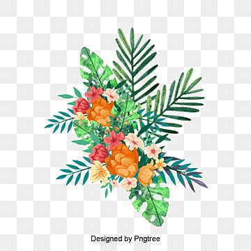 Tropical Png Vectors PSD And Icons For Free Download