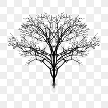 Black And White Tree Png Vectors Psd And Clipart For Free