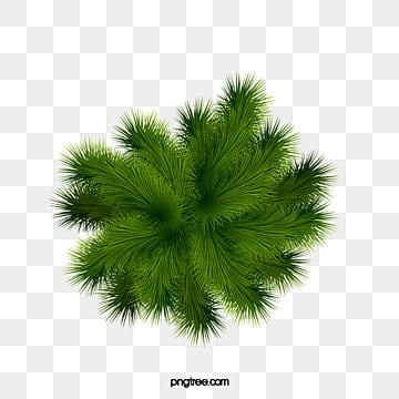 Free Download Palm Tree Clipart Green PNG Image And