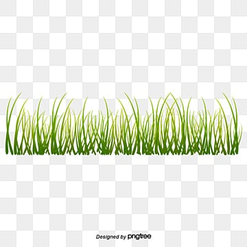Grass PNG Images, Download 16,322 PNG Resources with Transparent