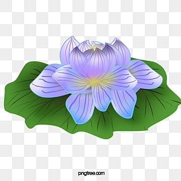 Flor De Loto Png Vectores Psd E Clipart Para Descarga Gratuita