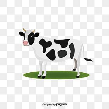 Vector de vacas, Vaca Lechera, Cartoon Vaca, Animal PNG y Vector