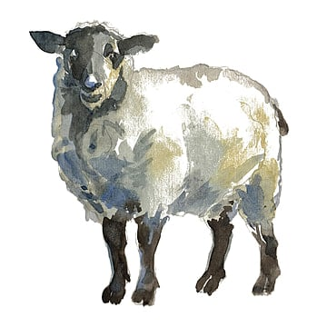 Sheep PNG Images, Download 3,856 PNG Resources with ...